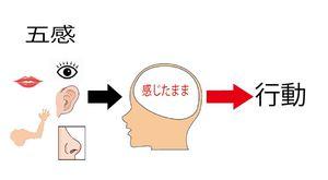 脳の思考3.JPG