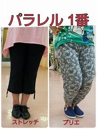s-用語集 用パラレル1a.jpg