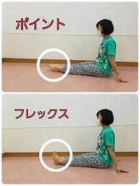 s-用語集 用ポイントフレックス.jpg