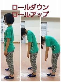 s-用語集 用ロールダウン1.jpg