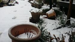 s-1_30家の庭2.jpg