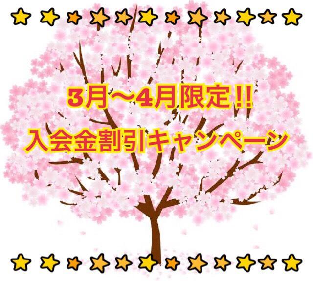 S__27705420.jpg
