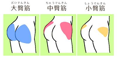 3津お尻.PNG